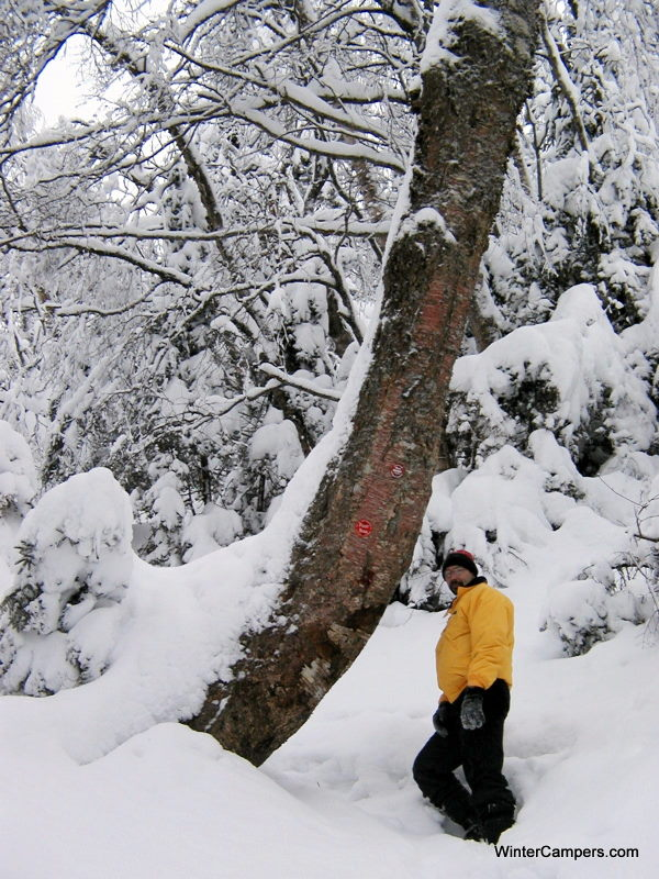 SnowyMtn1_NY_USA